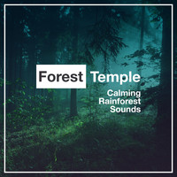 Calming Rainforest Sounds - Forest Temple