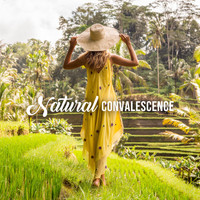 Natural Healing Music Zone - Natural Convalescence (Get Back to Nature with Calming Music and Sounds)