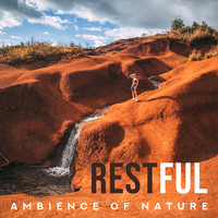 Natural Healing Music Zone - Restful Ambience of Nature: Serene, Peaceful and Tranquil Music for Learning, Sleeping, Meditation, Relaxation, Spa or Many More