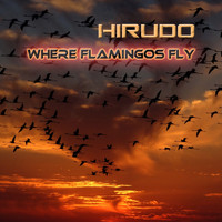 Hirudo - Where Flamingos Fly