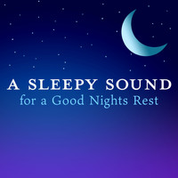 Relaxing BGM Project - A Sleepy Sound for a Good Nights Rest
