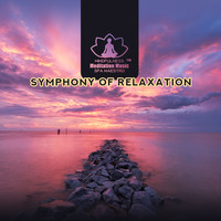 Mindfulness Meditation Music Spa Maestro - Symphony of Relaxation (Spa Music, Meditation, Well Being, Relax)