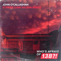 John O'Callaghan - Striker (Liam Wilson Remix)