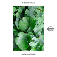 The Young Punx - So Real