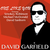 David Garfield - One Like You (Radio Version)