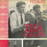 Various Artists - Fleá Ceoil