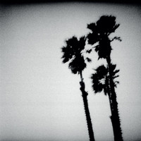 The Twilight Singers - Blackberry Belle