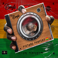 Bugle - Picture Perfect