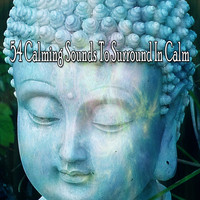 Zen Meditation and Natural White Noise and New Age Deep Massage - 54 Calming Sounds to Surround in Calm