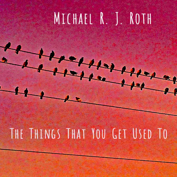 Michael R. J. Roth - The Things That You Get Used To