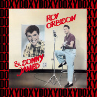 Roy Orbison - RCA Sessions (Remastered Version) (Doxy Collection)