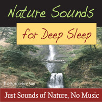The Kokorebee Sun - Nature Sounds for Deep Sleep (Just Sounds of Nature, No Music)