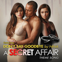 Nina - Don't Say Goodbye: A Secret Affair Theme Song