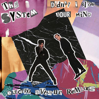 The System - Didn't I Blow Your Mind (Electro Avenue Remixes)