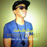 Culoe De Song - Bright Forest (Hume Da Muzika Remix)