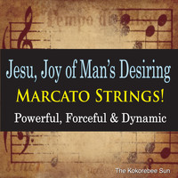 The Kokorebee Sun - Jesu, Joy of Man's Desiring Marcato Strings! (Powerful, Forceful & Dynamic)
