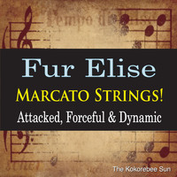 The Kokorebee Sun - Fur Elise Marcato Strings! (Attacked, Forceful & Dynamic)