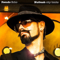 Pseudo Echo - Nutbush City Limits
