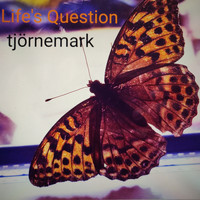 Tjörnemark - Life's Question