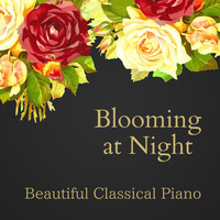 Relaxing BGM Project - Beautiful Classical Piano - Blooming at Night