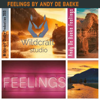 Andy De Baeke - Feelings (Extended Mix)