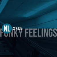 Sir Joe - Funky Feelings