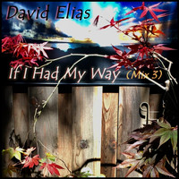 David Elias - If I Had My Way (Mix 3)