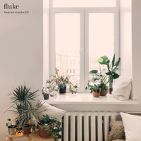 Fluke - How We Wonder