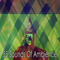 Zen Meditation and Natural White Noise and New Age Deep Massage - 55 Sounds of Ambience