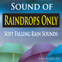 The Kokorebee Sun - Sound of Raindrops Only (Soft Falling Rain Sounds)