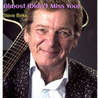 Steve Birks - Almost (Didn't Miss You)