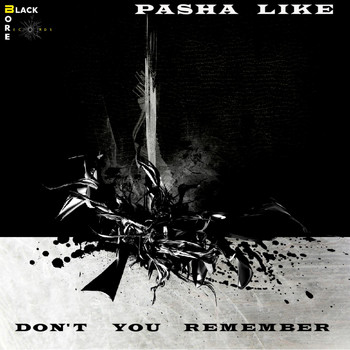 Pasha Like - Don't You Remember