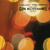 Gin Blossoms - Follow You Down