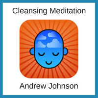 Andrew Johnson - Cleansing Meditation