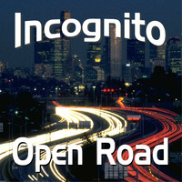 Incognito - On the Way