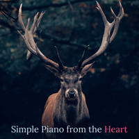 Relaxing Piano Music Consort, Piano for Studying, Soothing Sounds - Simple Piano from the Heart