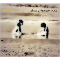 GAmS - Feeling from the Moon