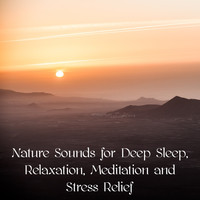 Sounds of Nature White Noise for Mindfulness Meditation and Relaxation, Relaxing Mindfulness Meditation Relaxation Maestro, Sounds of Nature White Noise Sound Effects - Nature Sounds for Deep Sleep, Relaxation, Meditation and Stress Relief