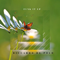 Riccardo De Polo - Funk It Up
