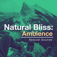 Natural Sounds - Natural Bliss: Ambience
