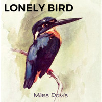 Miles Davis - Lonely Bird