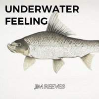 Jim Reeves - Underwater Feeling