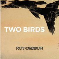 Roy Orbison - Two Birds