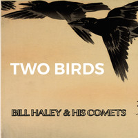 Bill Haley & His Comets - Two Birds