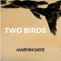 Marvin Gaye - Two Birds