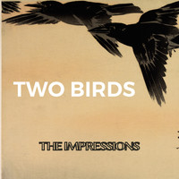 The Impressions - Two Birds