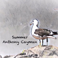 Anthony Cayman - Summer
