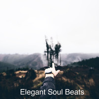 Elegant Soul Beats - Nutha Direction