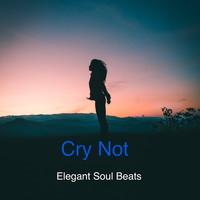 Elegant Soul Beats - Cry Not