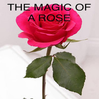 Don Wade - The Magic of a Rose